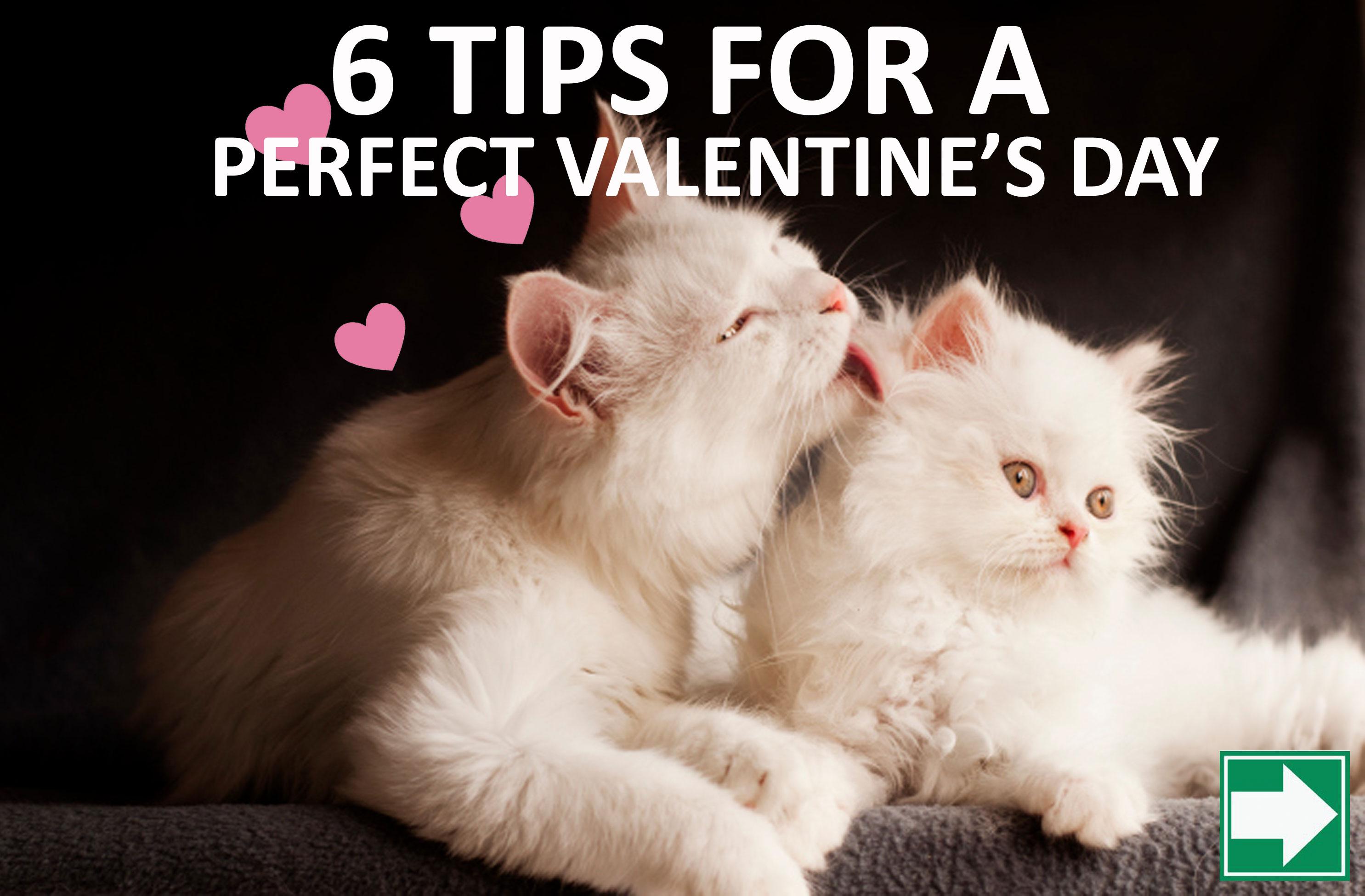 Perfect Valentine Date
