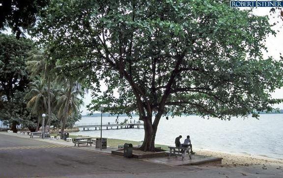 Beautiful Sembawang Park