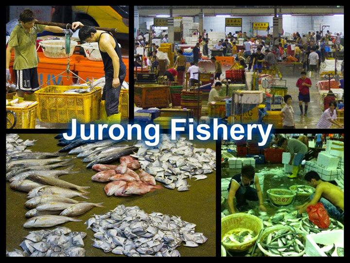 Jurong Fishery Port